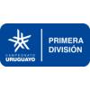 Primera División 2021