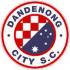 Данденонг Сити